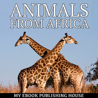Animals from Africa - Various Authors