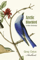 Arctic Bluebird and Other Birdsongs: Ambient Soundscape for Meditation - Greg Cetus