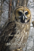 The Brown Owl: A Fairy Story - Ford Madox Ford