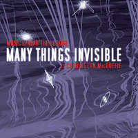 Many Things Invisible - Carrington MacDuffie