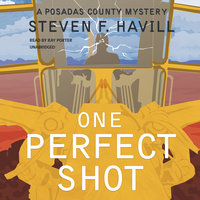 One Perfect Shot - Steven F. Havill