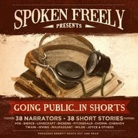 Going Public ... in Shorts! - Various Authors