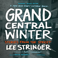 Grand Central Winter, Expanded Second Edition - Lee Stringer