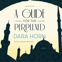 A Guide for the Perplexed - Dara Horn