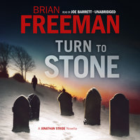Turn to Stone - Brian Freeman