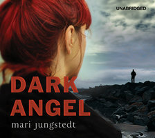 Dark Angel - Mari Jungstedt
