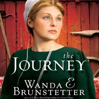 The Journey - Wanda Brunstetter