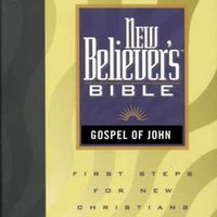 New Believers Bible - Greg Laurie
