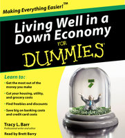 Living Well in a Down Economy for Dummies - Tracy Barr