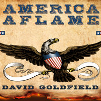 America Aflame: How the Civil War Created a Nation - David Goldfield