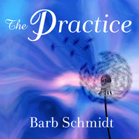 The Practice: Simple Tools for Managing Stress, Finding Inner Peace, and Uncovering Happiness - Barb Schmidt