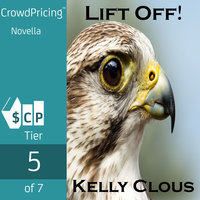 Lift Off! Falcon Edition - Kelly Clous