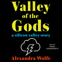 The Valley of the Gods: A Silicon Valley Story - Alexandra Wolfe
