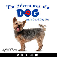 The Adventures of a Dog, and a Good Dog Too - Alfred Elwes
