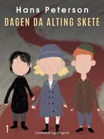 Dagen da alting skete - Hans Peterson