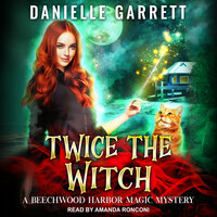 Twice the Witch - Danielle Garrett