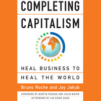 Completing Capitalism - Bruno Roche,Jay Jakub