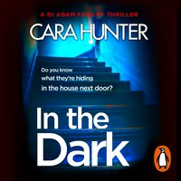 In The Dark - Cara Hunter