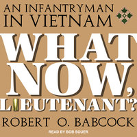 What Now, Lieutenant? - Robert O. Babcock