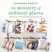 The Ministry of Ordinary Places - Shannan Martin