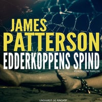Edderkoppens spind - James Patterson