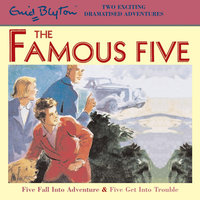 Five Fall Into Adventure & Five Get Into Trouble - Enid Blyton