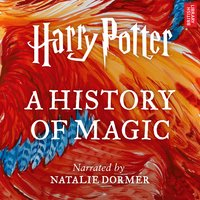 Harry Potter: A History of Magic - Pottermore Publishing,Ben Davies