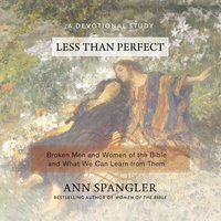 Less Than Perfect - Ann Spangler