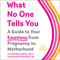 What No One Tells You: A Guide to Your Emotions from Pregnancy to Motherhood - Alexandra Sacks,Catherine Birndorf