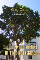 Indian Mynah Singing in Tropical Island - Greg Cetus