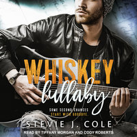 Whiskey Lullaby - Stevie J. Cole