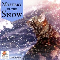 Mystery in the Snow - J.M. Evans
