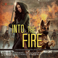 Into the Fire - Michael Anderle