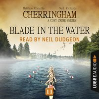 Blade in the Water - Matthew Costello, Neil Richards