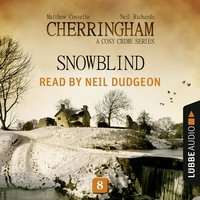 Snowblind - Matthew Costello, Neil Richards