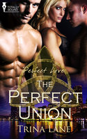 The Perfect Union - Trina Lane