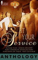 At Your Service - Nan Comargue,Cerise DeLand,Virginnia DeParte