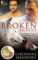 Broken Bridges - Cheyenne Meadows