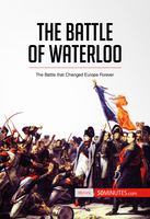 The Battle of Waterloo - 50 Minutes