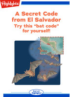 Secret Code: A Secret Code from El Salvador - Marcia Popp