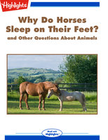 Why Do Horses Sleep on Their Feet? and Other Questions About Animals - Highlights for Children