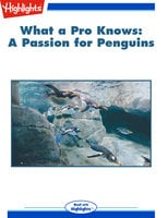 What a Pro Knows: Amy Graves: A Passion for Penguins - Mary Paulson