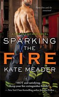 Sparking the Fire - Kate Meader