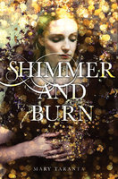Shimmer and Burn - Mary Taranta